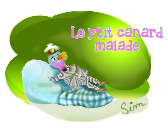 Canard3.png